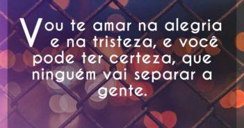 Vou te amar na alegria e na trist - Hugo Pena