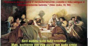 Adoro Te Devote (latim) letras - baixar - vídeo Católicas