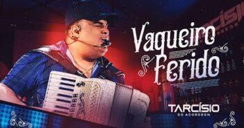 VAQUEIRO FERIDO - Tarcísio do Acordeon (DVD Meu Sonho)